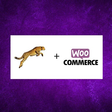 Pursuit and WooCommerce